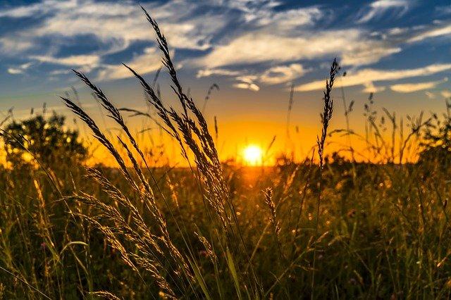 słońce photo